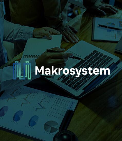 Makrosystem
